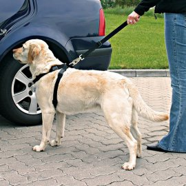 Szelki samochodowe dla psa - M 50-70cm