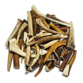 Antlers for dogs Antler dog chews