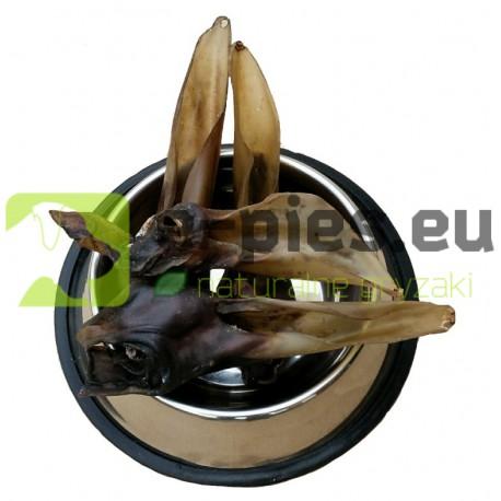 Ucho Jelenia 1szt. dł. 13-16cm - Gryzak - Sarnina